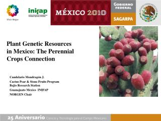Plant Genetic Resources in Mexico: The Perennial Crops Connection