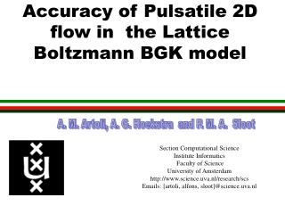 Accuracy of Pulsatile 2D flow in  the Lattice Boltzmann BGK model