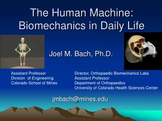 The Human Machine: Biomechanics in Daily Life
