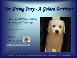 Pet Sitting Jerry