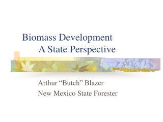 Biomass Development A State Perspective