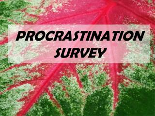 PROCRASTINATION SURVEY
