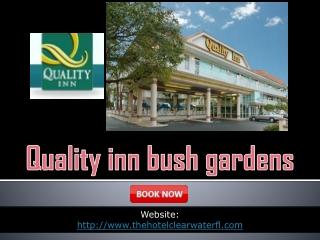 Quality inn bush gardens
