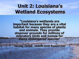 Unit 2: Louisiana's Wetland Ecosystems