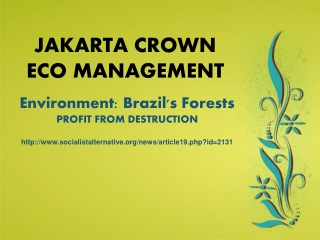 Jakarta Crown Eco Management| Environment: Brazil's Forests