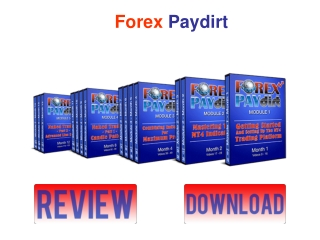 Forex Paydirt