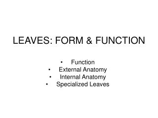 LEAVES: FORM  FUNCTION