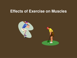 Energy for Exercise