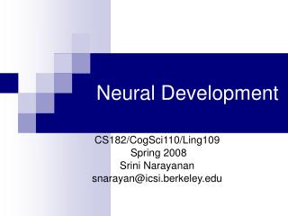 Neural Development