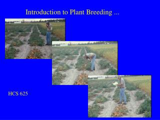 Introduction to Plant Breeding ...
