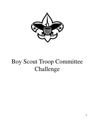 Boy Scout Troop Committee Challenge