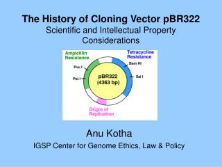 The History of Cloning Vector pBR322 Scientific and Intellectual Property Considerations
