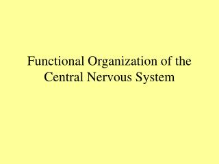 Functional Organization of the Central Nervous System