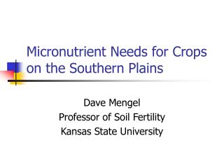 Micronutrient Needs for Crops on the Southern Plains