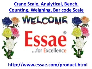 Crane Scale, Analytical Scale, Bench Scale, Counting Scale,