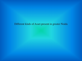 Different Kind of Asset Present in Greater Noida