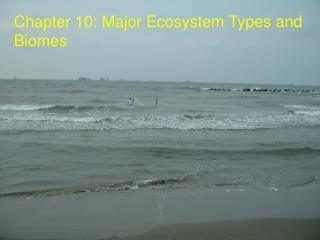 Chapter 10: Major Ecosystem Types and Biomes
