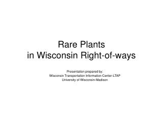 Rare Plants  in Wisconsin Right-of-ways