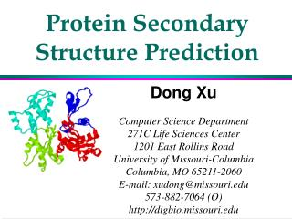 Protein Secondary Structure Prediction