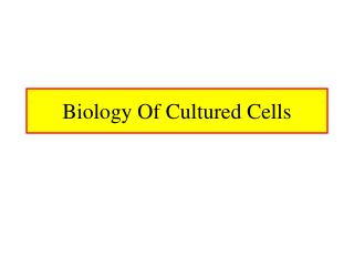 Biology Of Cultured Cells