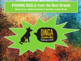 FISHING REELS from the Best Brands