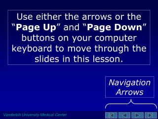 "Use either the arrows or the "" Page Up "" and "" Page Down "" buttons on your computer keyboard to move through the slides"
