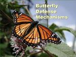 Butterfly Defense Mechanisms