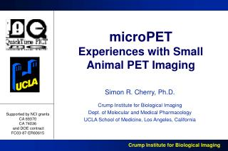 microPET Experiences with Small Animal PET Imaging