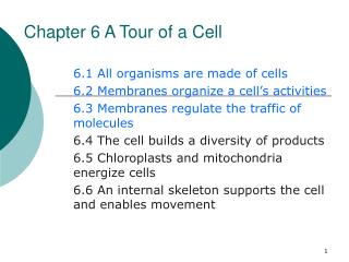 Chapter 6 A Tour of a Cell