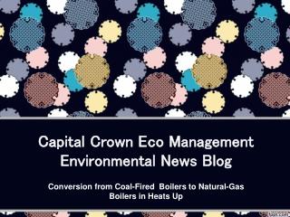 Capital Crown Eco Management Environmental News Blog