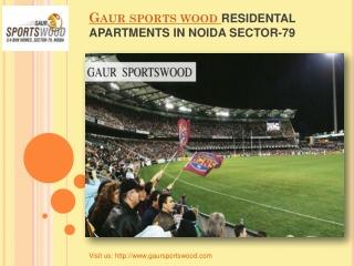 Best Offers Gaur Sports Wood