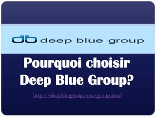 Pourquoi choisir Deep Blue Group?