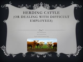 Herding Cattle  (or Dealing with Difficult Employees)