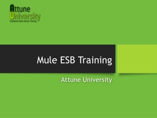 Mule ESB Training