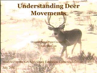 Understanding Deer Movements