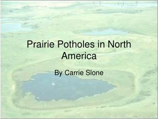 Prairie Potholes in North America