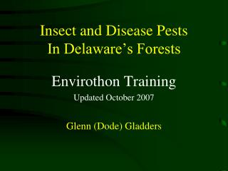 Insect and Disease Pests In Delaware's Forests