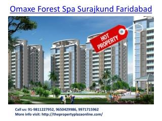 Omaxe Residential Project Faridabad