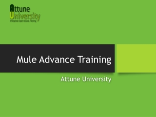 Mule Essential Advanced Training