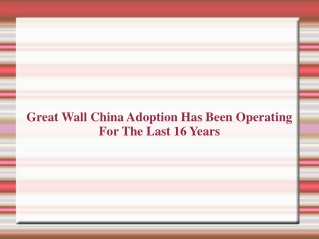 Great Wall China Adoption | Great Wall China Adoption Review