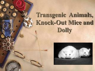Transgenic  Animals,  Knock-Out Mice and Dolly