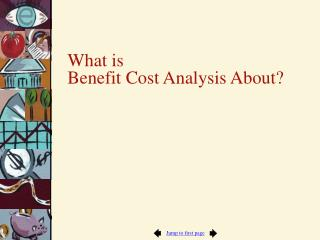 What is  Benefit Cost Analysis About?