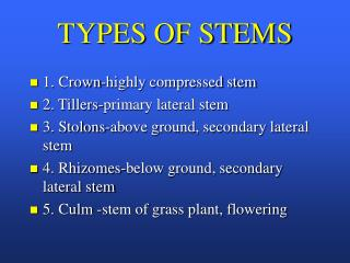 TYPES OF STEMS