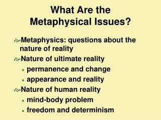 What Are the  Metaphysical Issues