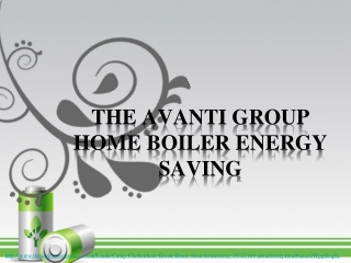The Avanti Group Home Boiler Energy Saving: Linda Camp, Chel