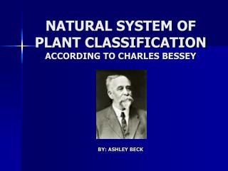 NATURAL SYSTEM OF PLANT CLASSIFICATION ACCORDING TO CHARLES ...