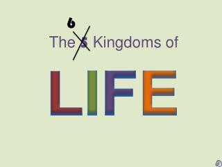 The 5 Kingdoms of