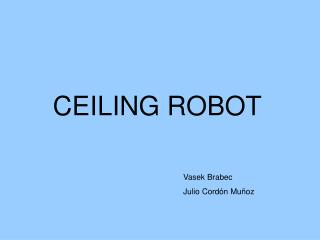 CEILING ROBOT