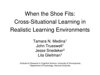 When the Shoe Fits: Cross-Situational Learning in Realistic Learning Environments