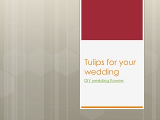 Tulips for your wedding